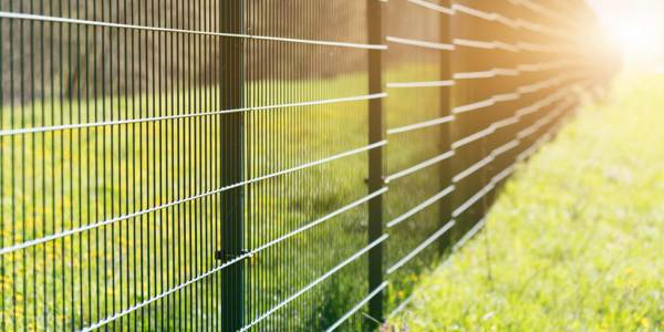 Metal fence leaving in perspective with the sun on grass background